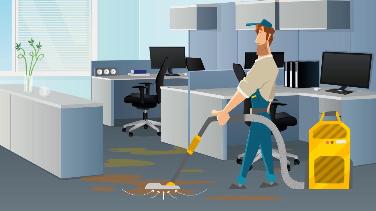 Belmar Commercial Carpet Cleaning