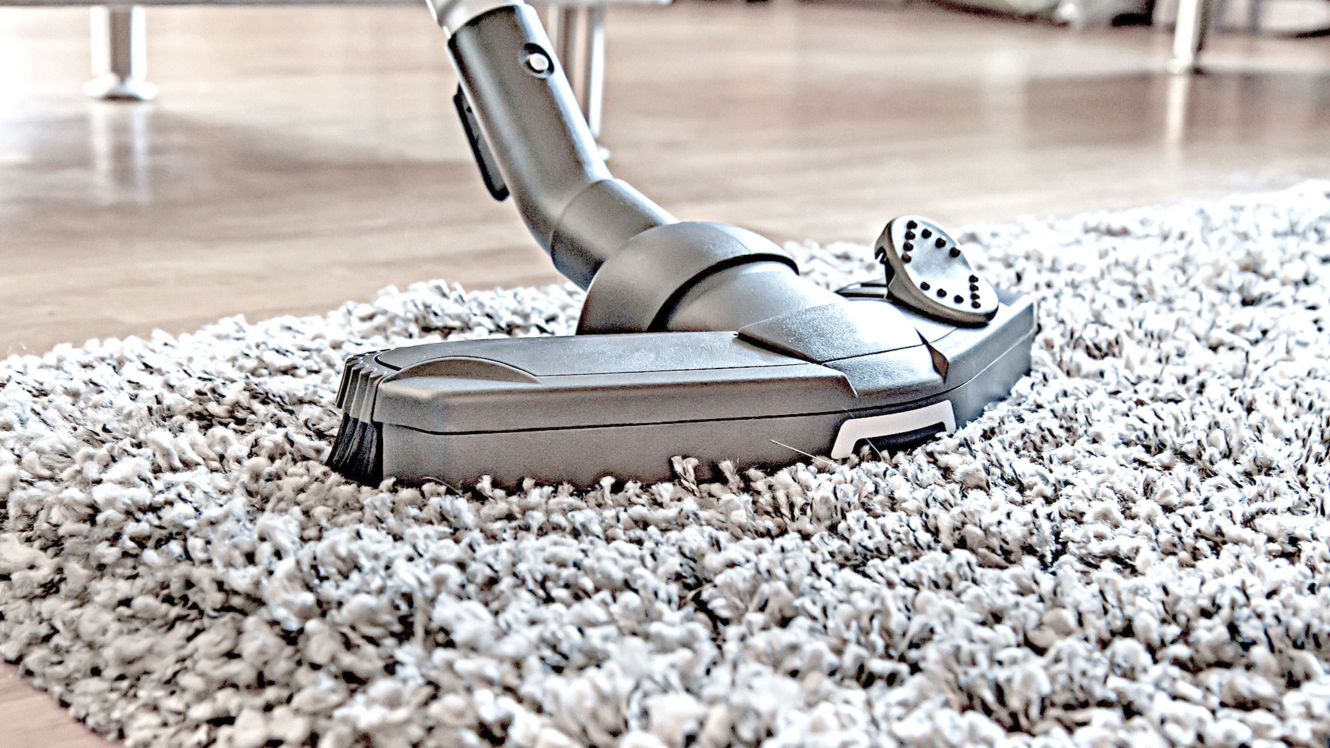 Manasquan Commercial Carpet Cleaning